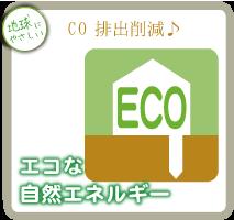 CO 排出削減